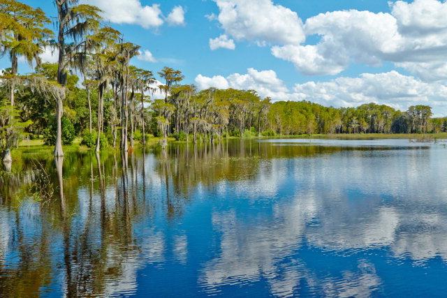 175 acres Vernon, FL