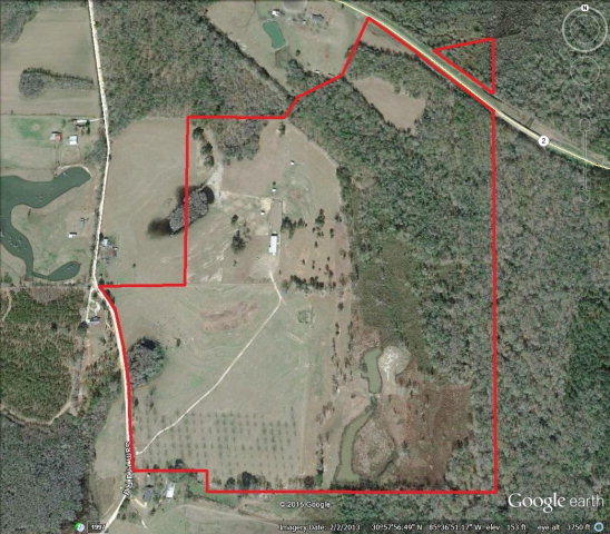 Image of Acreage for Sale near Bonifay, Florida, in Holmes county: 148.95 acres