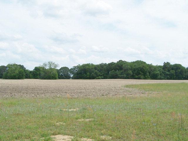 Real Estate for Sale, ListingId: 32756531, Greenwood,FL32443