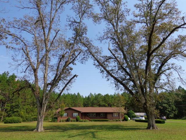 7.29 acres Altha, FL