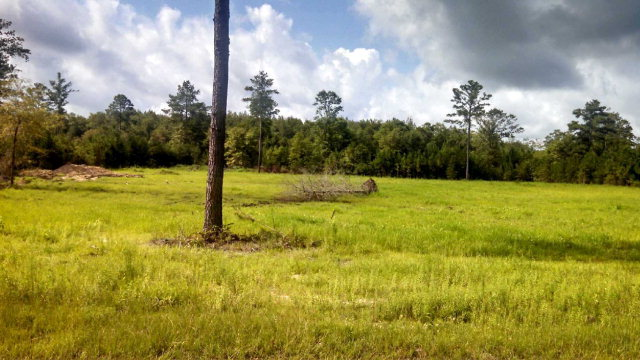 Real Estate for Sale, ListingId: 36183999, Bonifay, FL  32425
