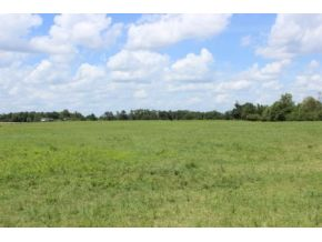 Real Estate for Sale, ListingId: 29604278, Blountsville,AL35031