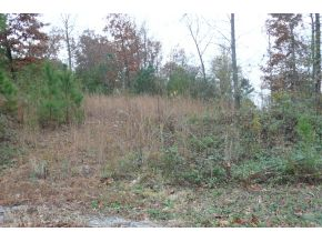 County Road 7001, CULLMAN, AL 35055
