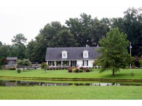 9 acres in Vinemont, Alabama