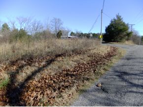 11 County Road 1592, Baileyton, AL 35019