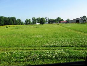Real Estate for Sale, ListingId: 23713733, Cullman,AL35058