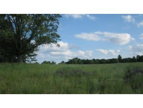 70 acres by Addison, Alabama for sale
