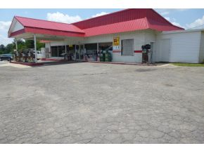 County Road 437, Cullman, AL 35057