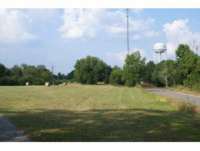 Real Estate for Sale, ListingId: 28639429, Crane Hill,AL35053