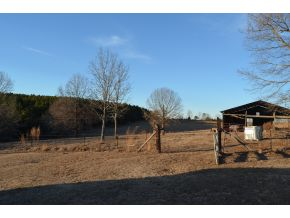 62 acres in Double Springs, Alabama