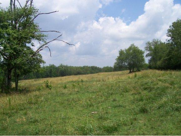 Real Estate for Sale, ListingId: 34953748, Blountsville,AL35031