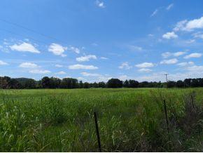Real Estate for Sale, ListingId: 29185201, Cullman,AL35057