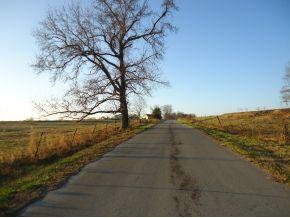 Pan Creek Rd & Summit Rd, Baileyton, AL 35019