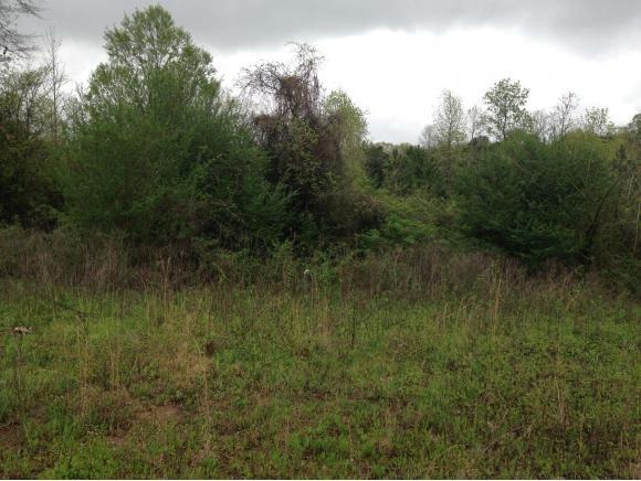 8.6 acres Danville, AL