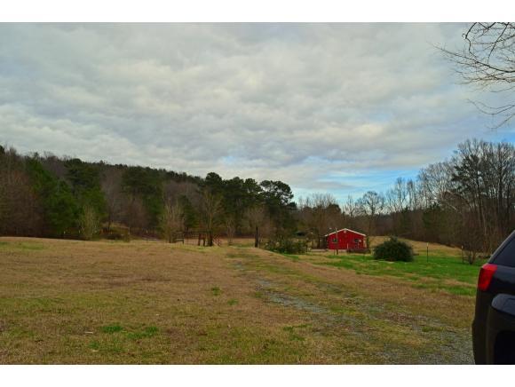 Real Estate for Sale, ListingId: 36803888, Blountsville,AL35031