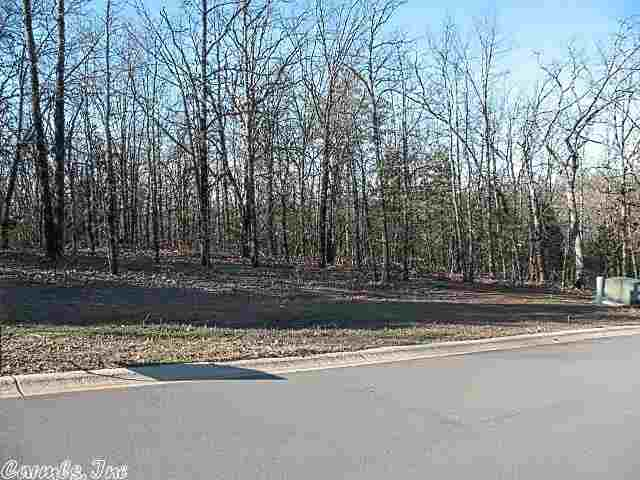 Lot 53 Persimmon Ridge Estates Greenbrier, AR 72058