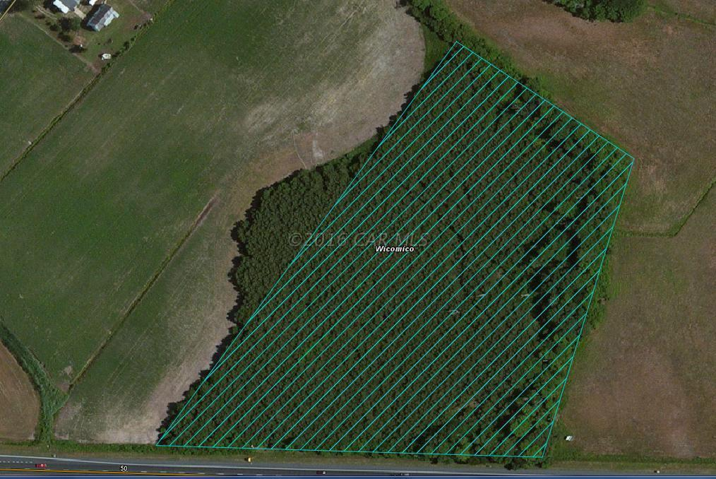 Image of Commercial for Sale near Pittsville, Maryland, in Wicomico County: 8.65 acres