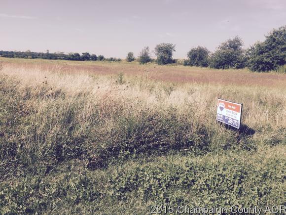 466 County Road 100 N, Sadorus, IL 61872
