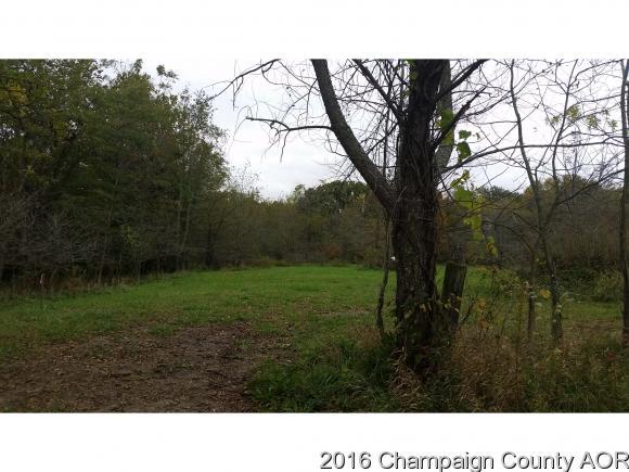 2079 County Road 1100 N, Sidney, IL 61877