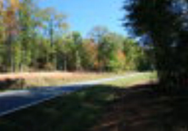 Lot 39 JJ GUFFEY ROAD Rutherfordton, NC 28139