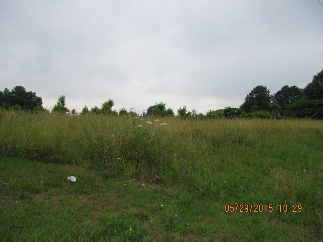 Commercial Property for Sale, ListingId:33602865, location: 1805 Fallston Rd Shelby 28150