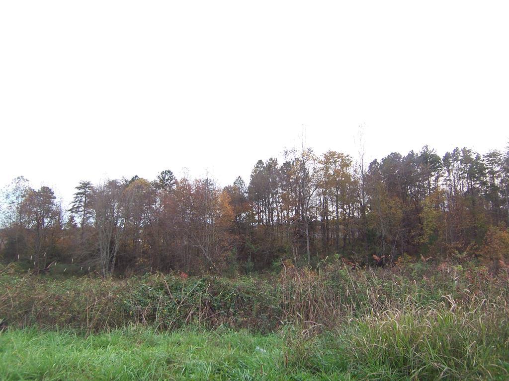 116 Deer Meadow Lane Lawndale, NC 28090