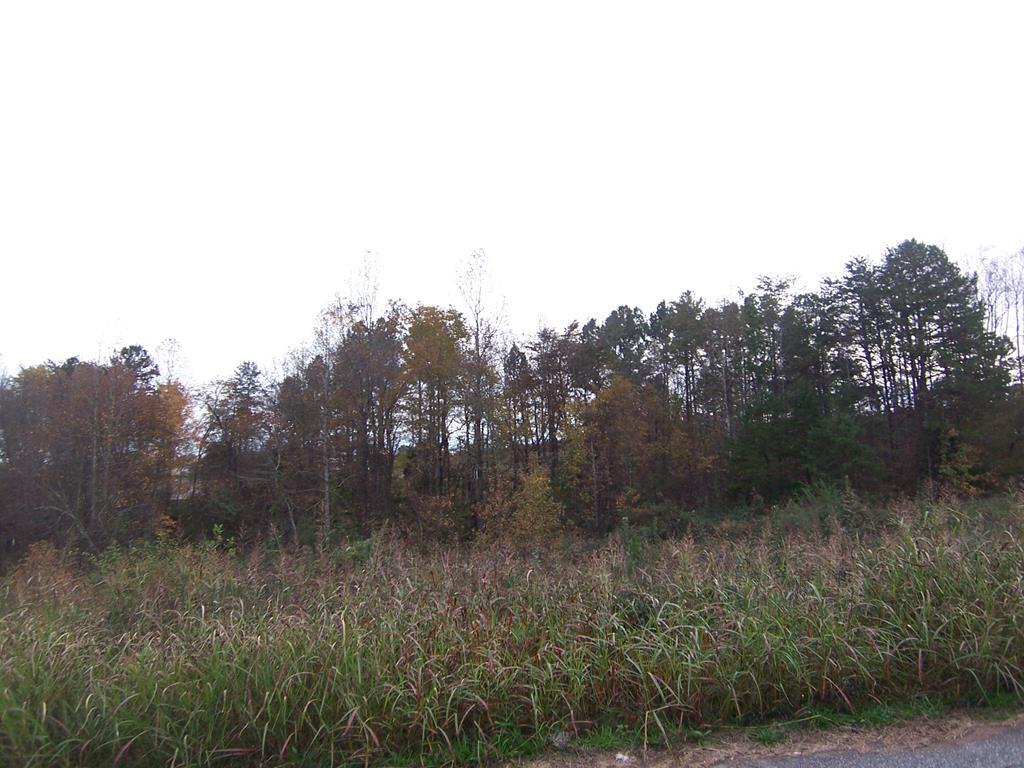118 Deer Meadow Lane Lawndale, NC 28090