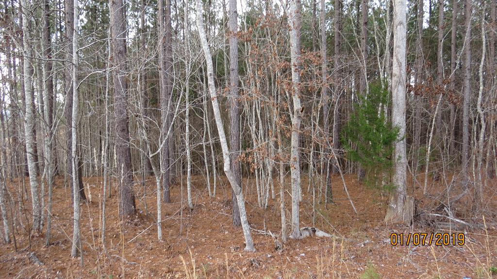 Farmer Jon's Trail Forest City, NC 28043