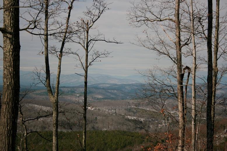 Lot 102 Arbra Mountain Way Bostic, NC 28018