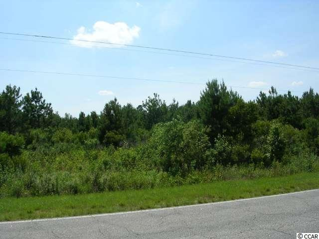 TRACT A Not Specified Nichols, SC 29581