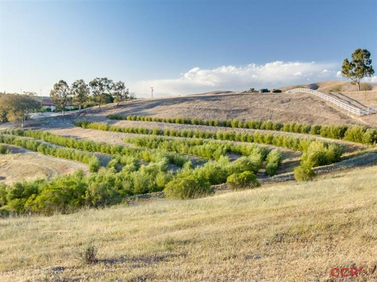 Commercial Property for Sale, ListingId:35063196, location: 4330 Camp 8 Paso Robles 93446