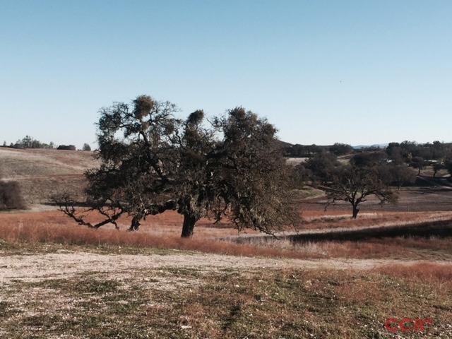 Photo of 63511 Argyle Road  Lockwood  CA