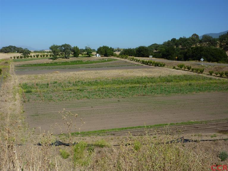 7.91 acres in Santa Ynez, California