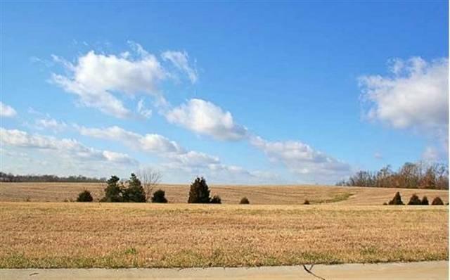 Real Estate for Sale, ListingId: 19618465, Jackson,MO63755