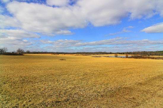 200 acres in Glenallen, Missouri