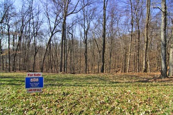 Real Estate for Sale, ListingId: 32328685, Jackson,MO63755