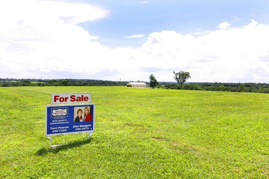 Real Estate for Sale, ListingId: 33818301, Sedgewickville,MO63781