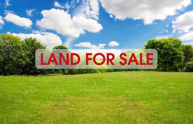 Real Estate for Sale, ListingId: 36584209, Jackson,MO63755