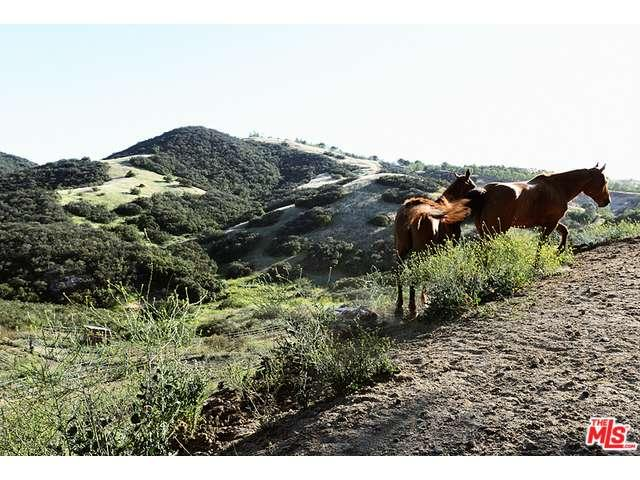 1170  ENCINAL CANYON Road, Malibu Canyon in Los Angeles County, CA 90265 Home for Sale
