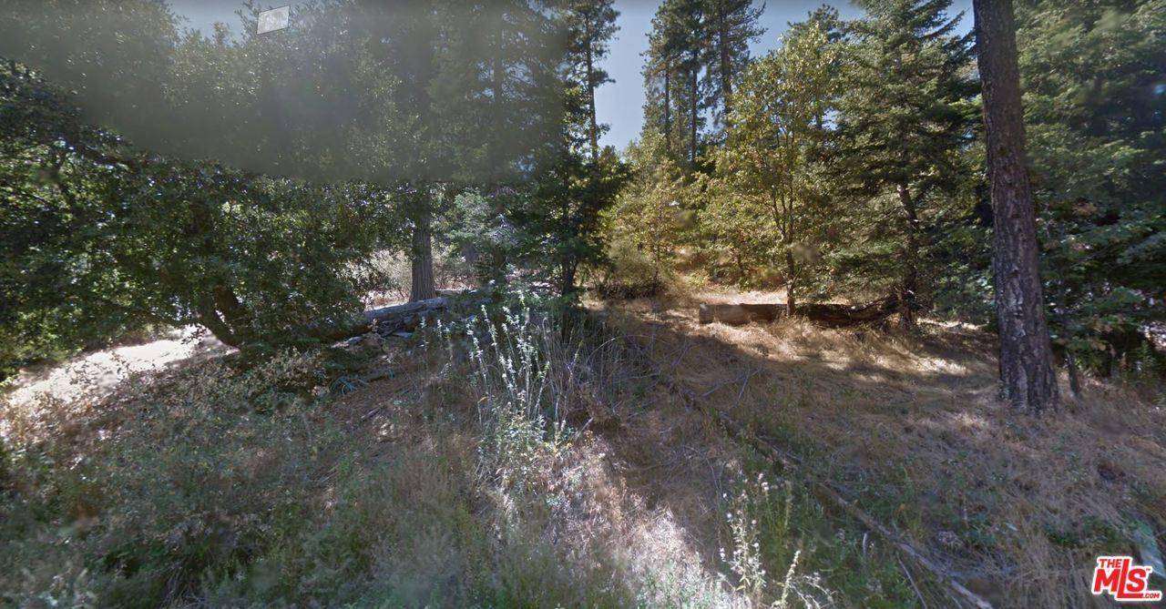 448 FIR Street Cedarpines Park, CA 92322
