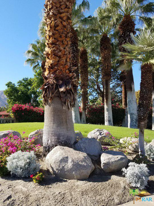2800 East LOS FELICES Circle - photo 2