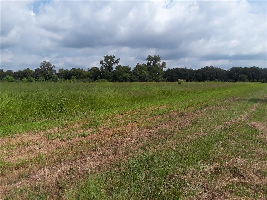 0 Winegart Lot 4 Lane Lecompte, LA 71346