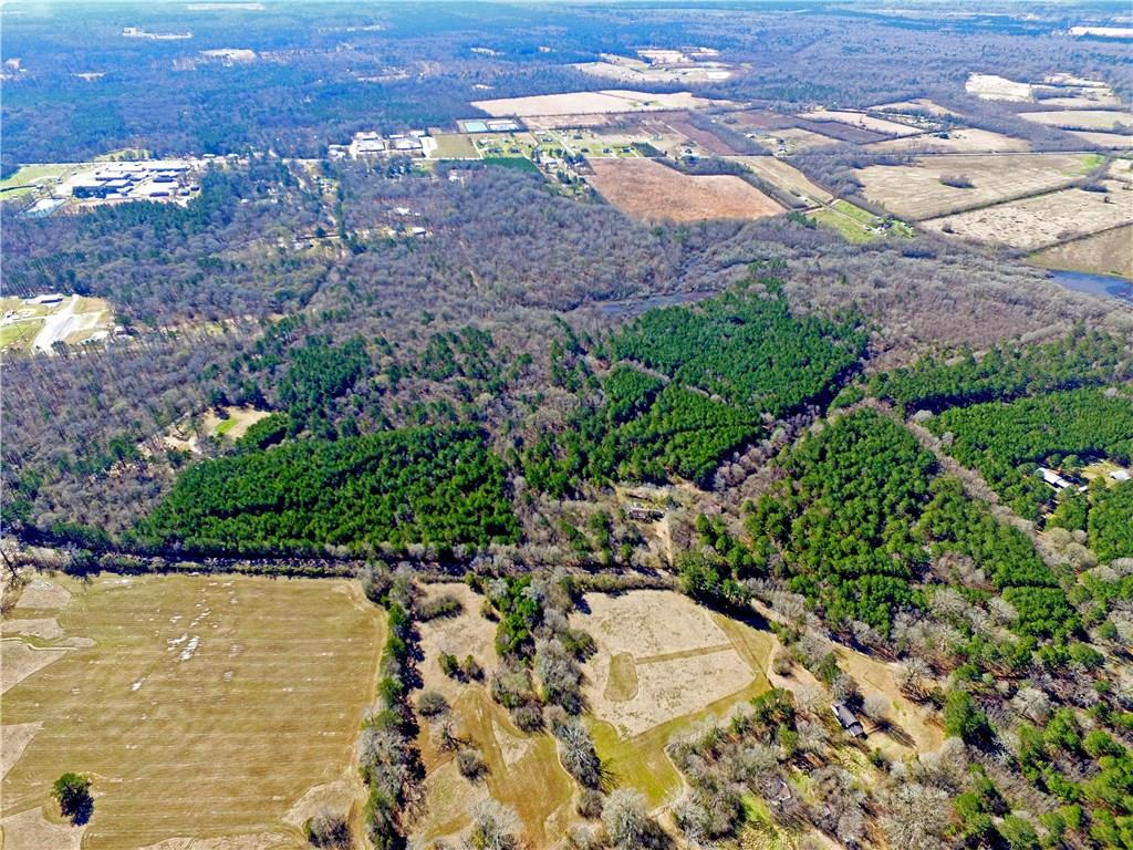 0 Willie Wells Tract 1a Deville, LA 71328