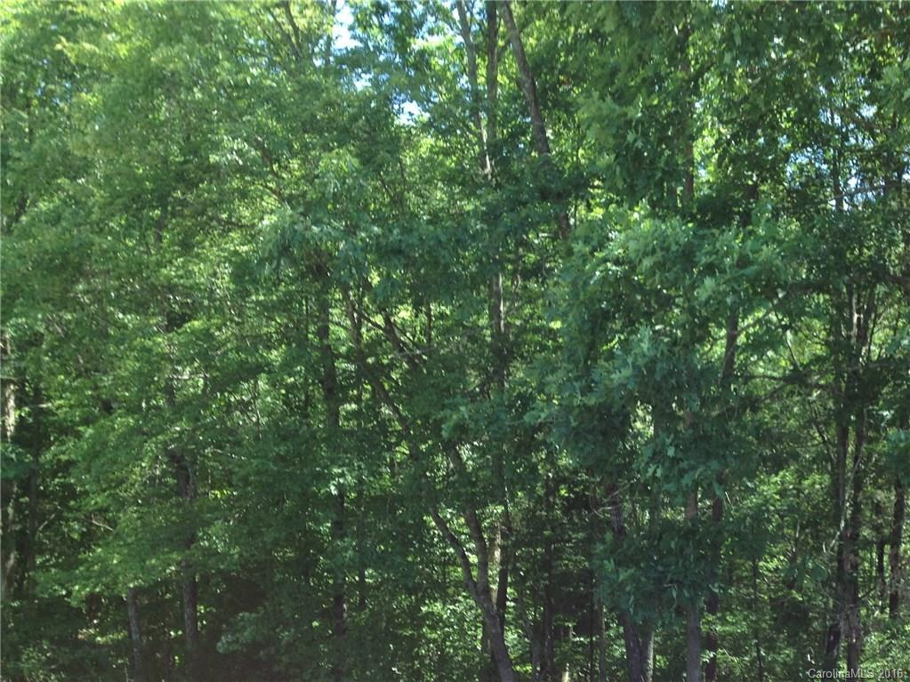 Lot 0 Little River Road, Indian Land in Lancaster County, SC 29707 Home for Sale