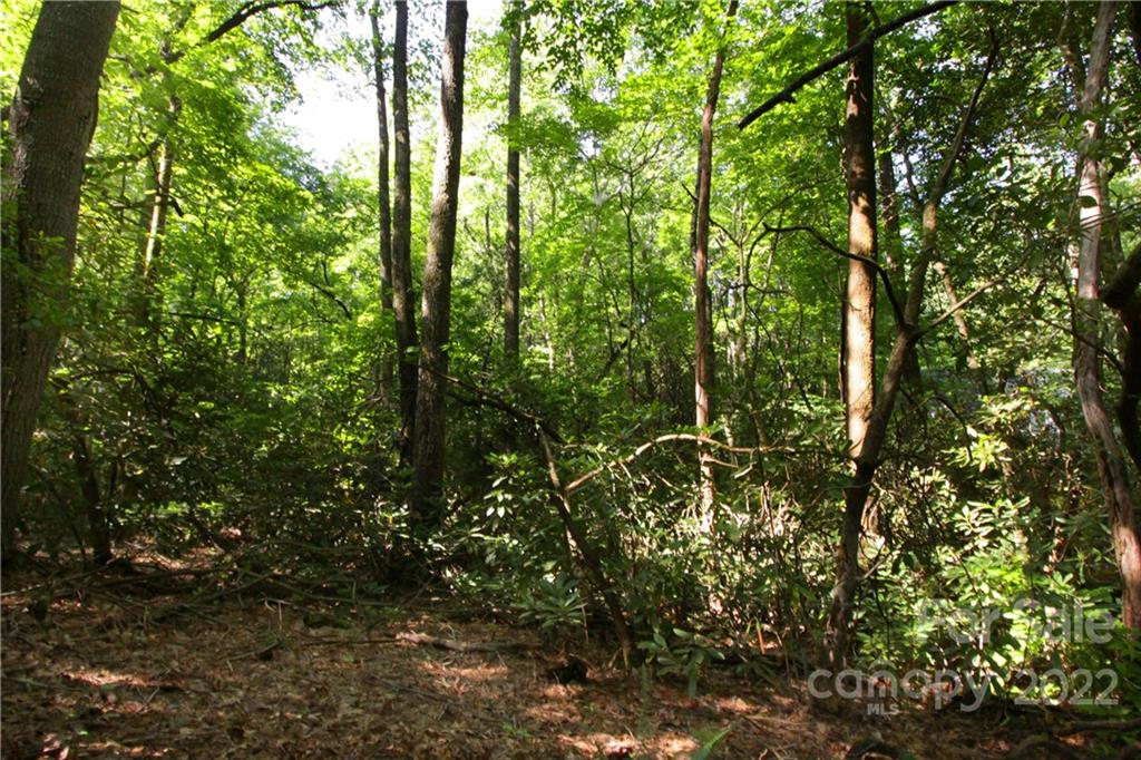 Lot 13 Laurel Ridge Road Pisgah Forest, NC 28768
