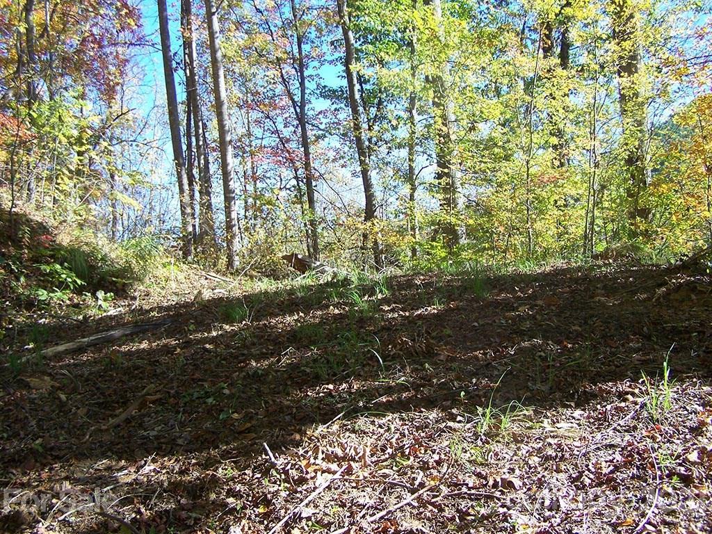 Lot 71 Running Deer Lane Mars Hill, NC 28754