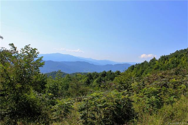 000 Crabtree Mountain Road Clyde, NC 28721