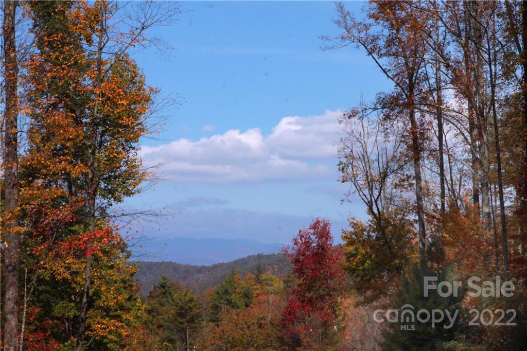 Lot 81 Peppervine Circle, Brevard in Transylvania County, NC 28712 Home for Sale