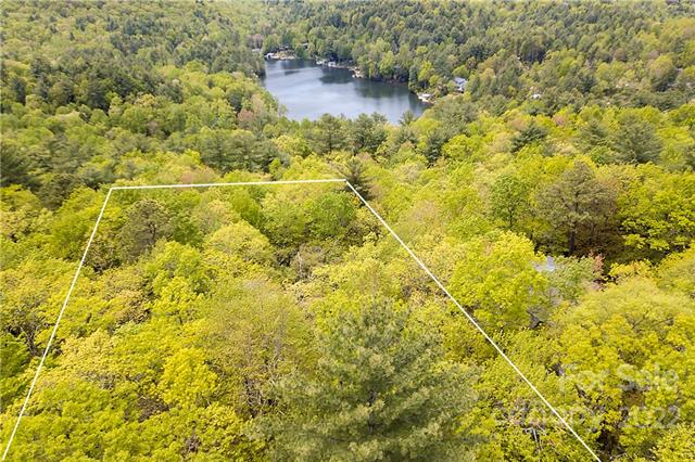 14 Lakeside Drive, Lake Toxaway in Transylvania County, NC 28747 Home for Sale