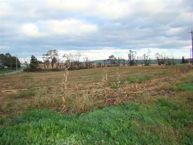 Real Estate for Sale, ListingId: 20328393, Shippensburg,PA17257